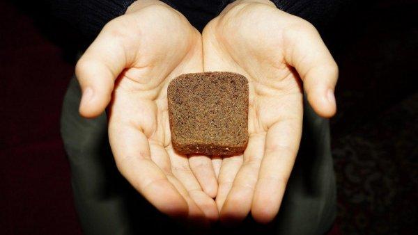 Скажут хлебу «нет»!: В России цены на зерно повысятся в несколько раз - аналитики