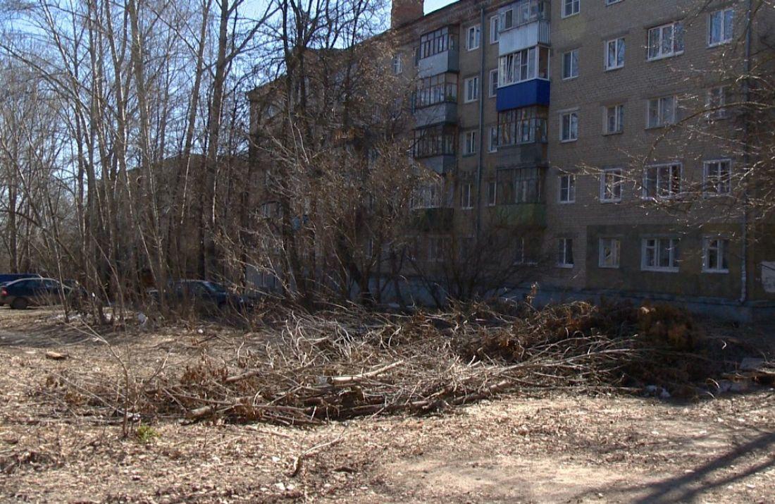 В Пензе на улице Пацаева лежит куча вырубленных деревьев