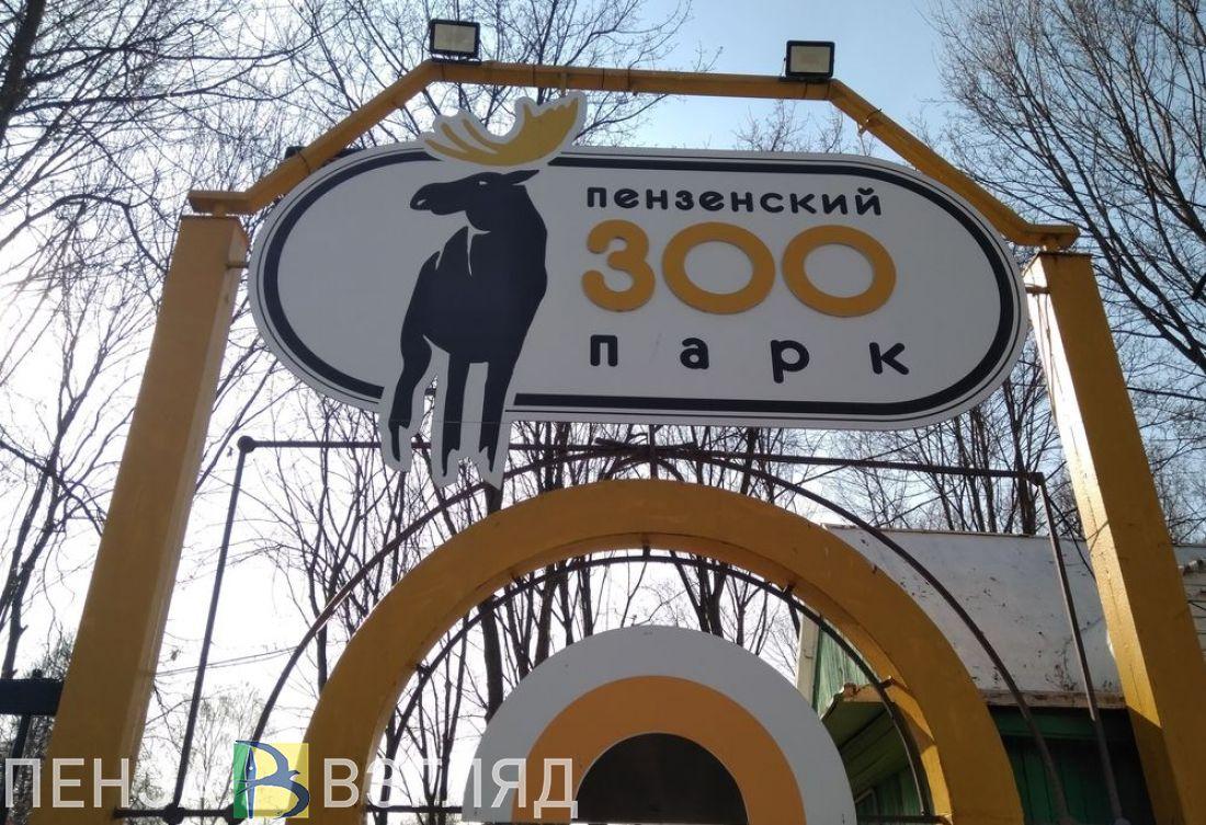 Изменился режим работы пензенского зоопарка
